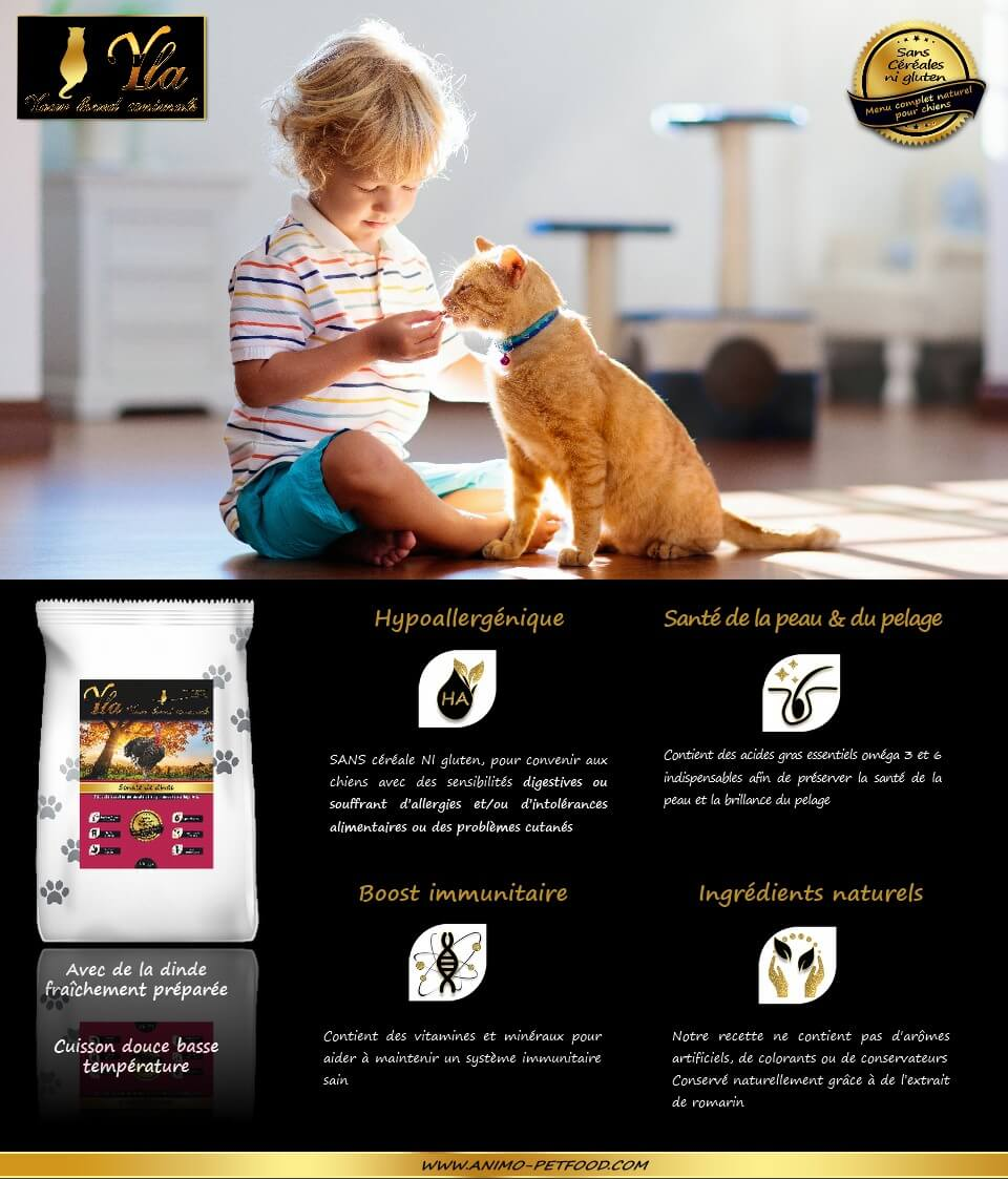 aliment-sans-cereale-ni-gluten-pour-chat