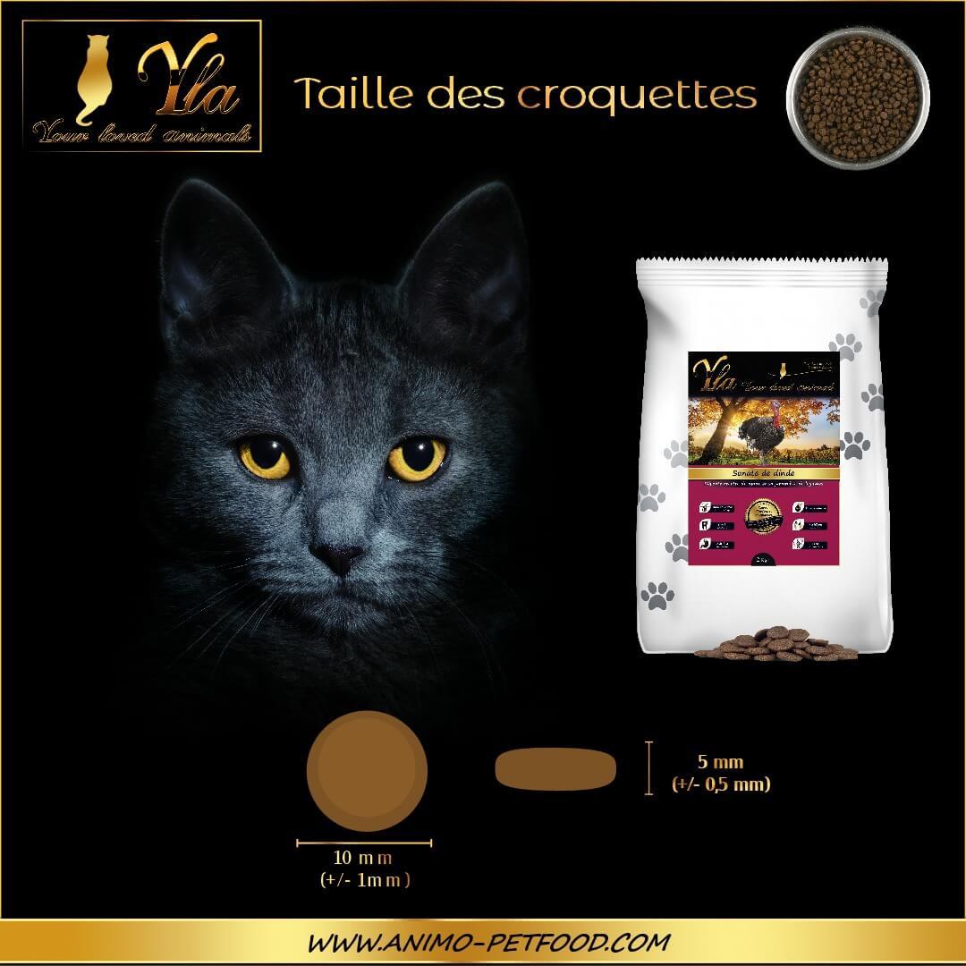 taille-croquettes-sans-cereale-ni-gluten-pour-chat