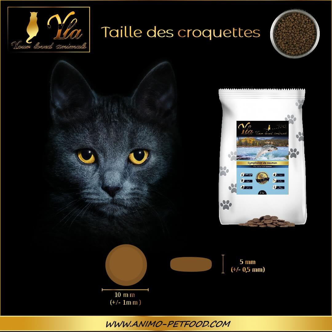 taille-croquettes-naturelles-et-hypoallergeniques-sans-cereales-pour-chat-au-saumon