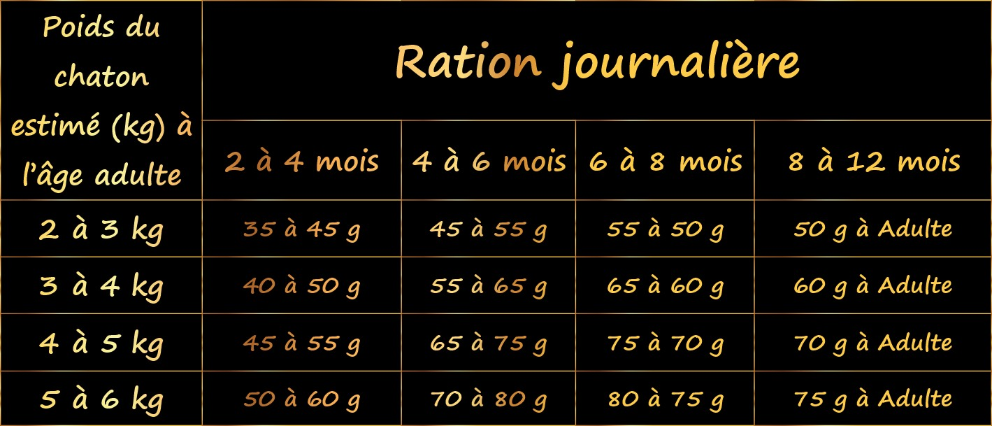 ration-journaliere-pour-chat