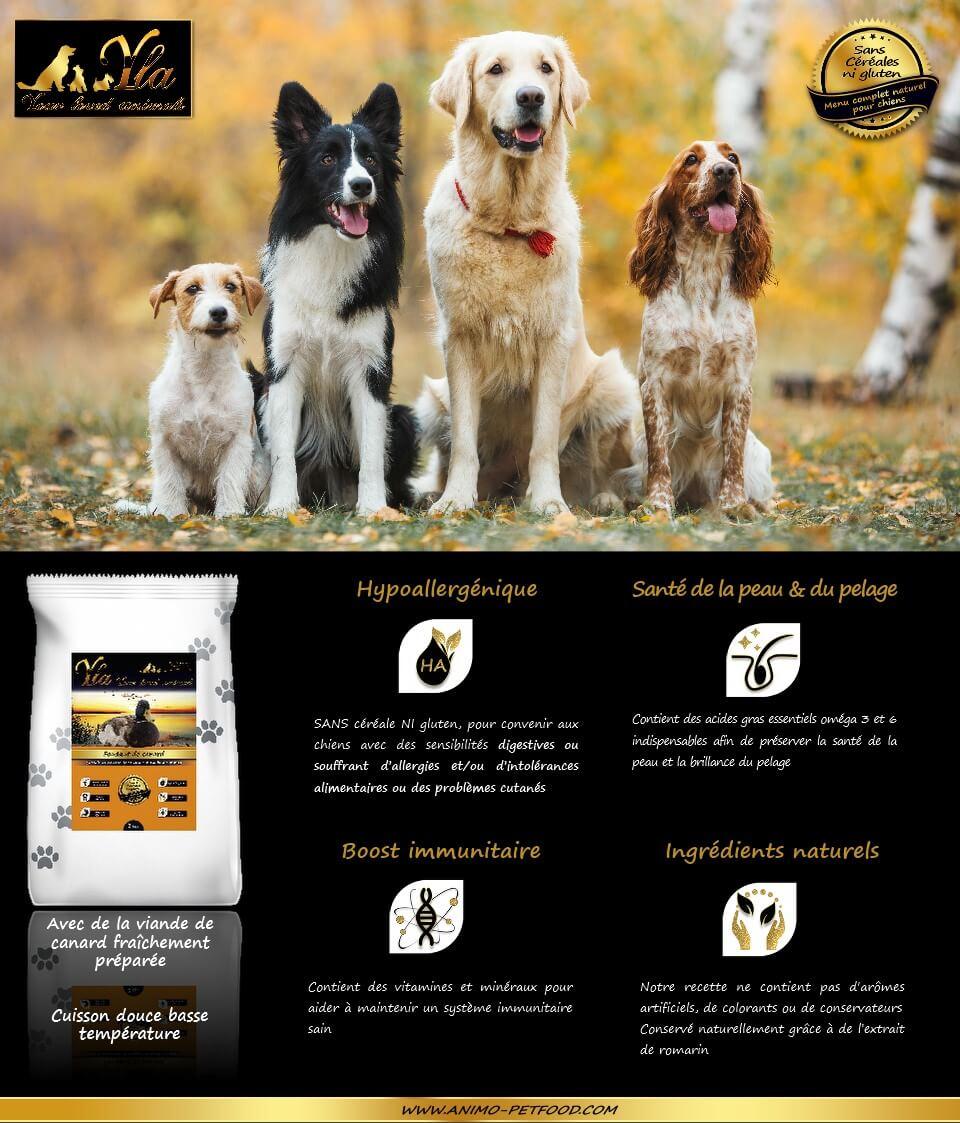 croquettes-sans-cereale-naturelles-hypoallergeniques-chiens-canard