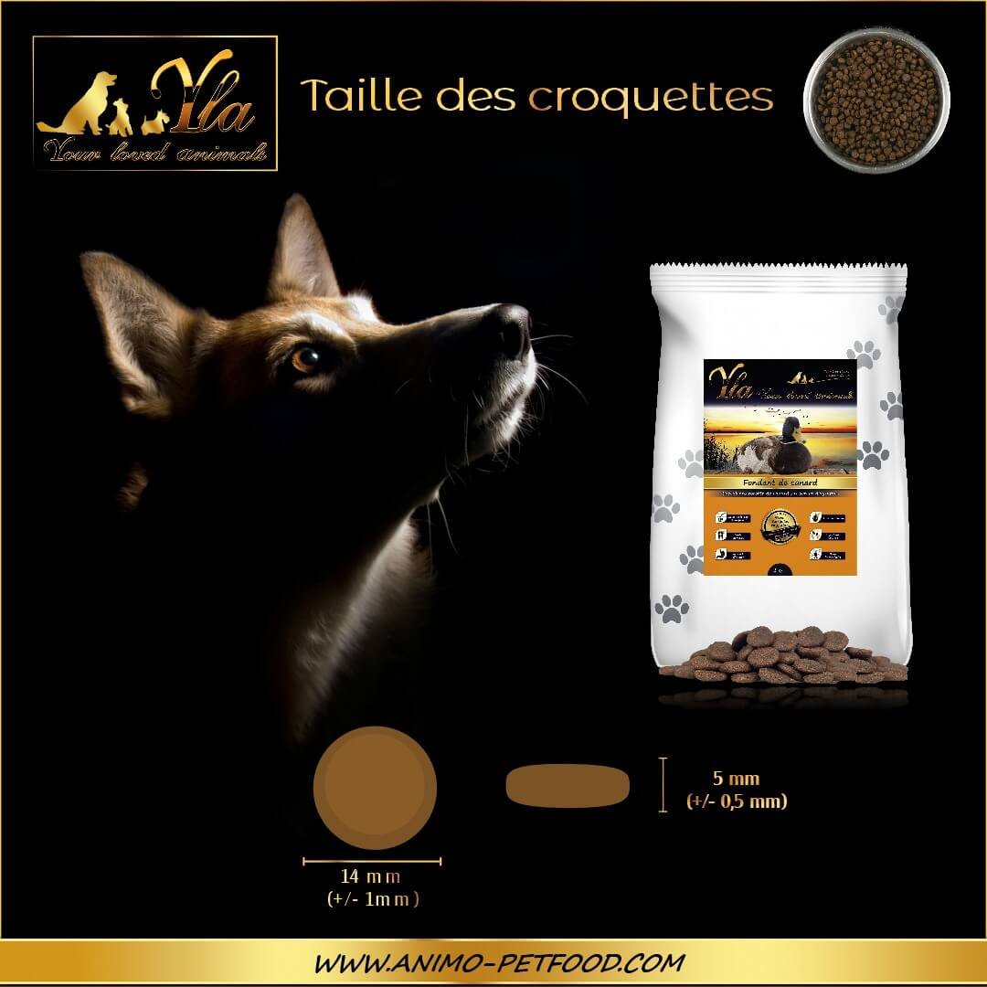 croquettes-sans-cereales-chien-adulte-toutes-races-au-canard-taille