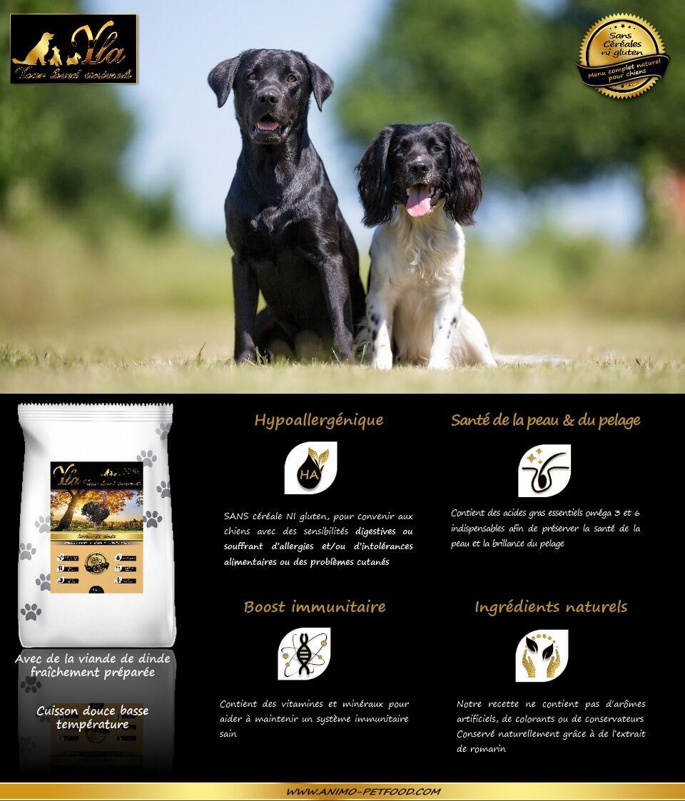 croquettes-sans-cereale-naturelles-hypoallergeniques-chiens-dinde