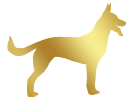 chien-grande-race