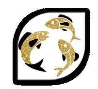 croquettes-aux-poissons-hypoallergeniques-chiot