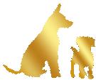 croquettes-sans-cereales-chiot-et-jeune-chien