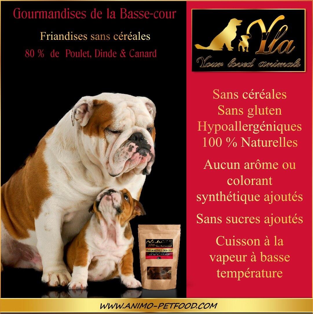 friandises-pour-chien-et-chiot-gourmandises-de-la-basse-cour-100g