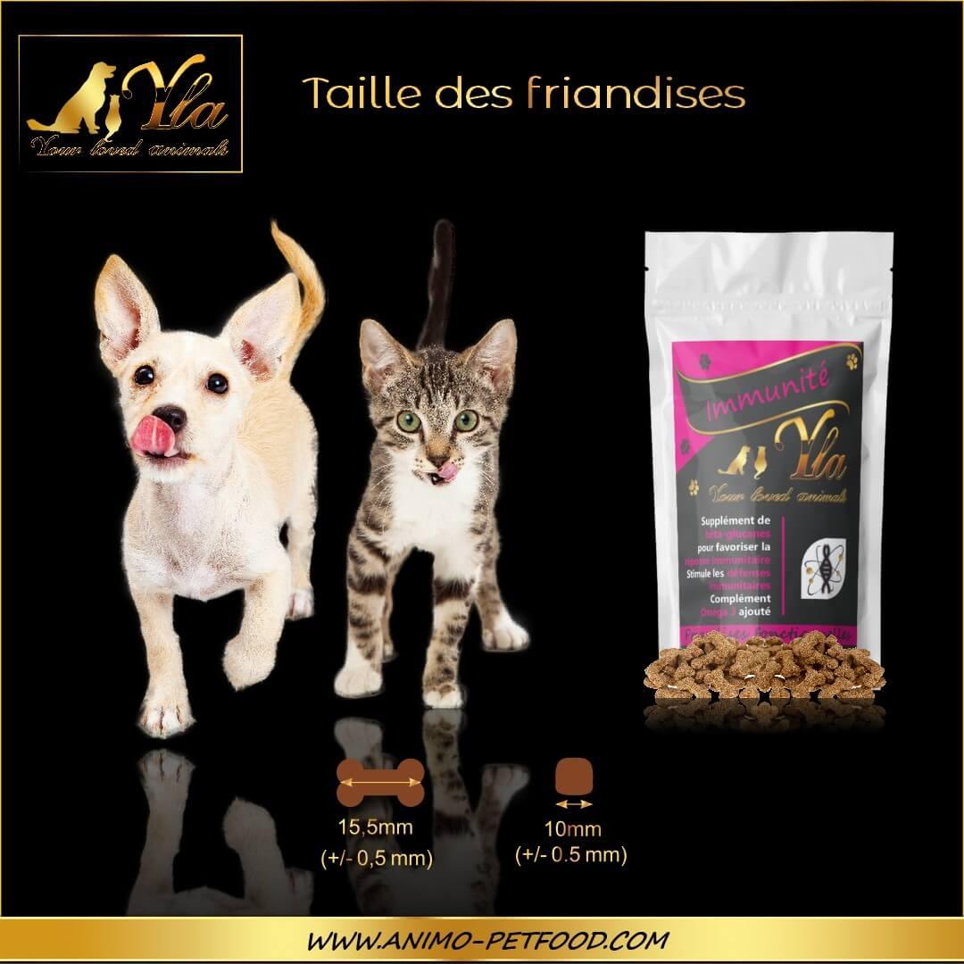 friandises-sans-cereales-ni-gluten-chien-chat