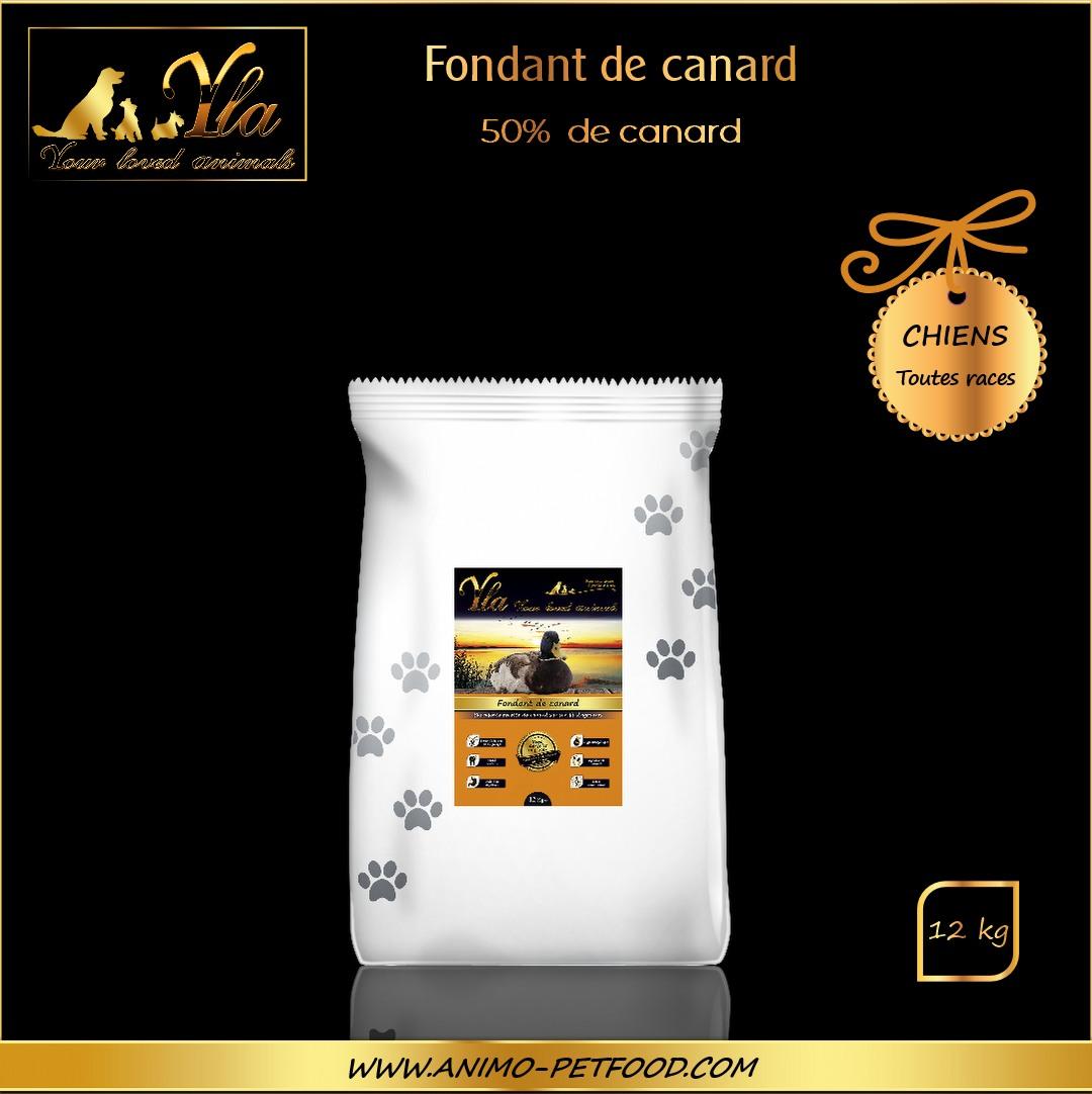 recette-sans-cereales-au-canard-pour-chien-sensible-toutes-tailles