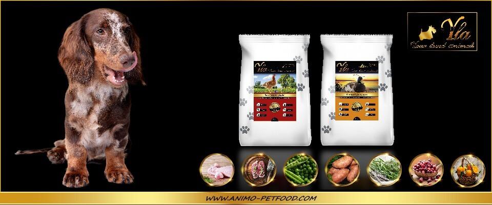alimentation-sans-cereales-ni-gluten-poulet-canard-pour-chien-petite-race
