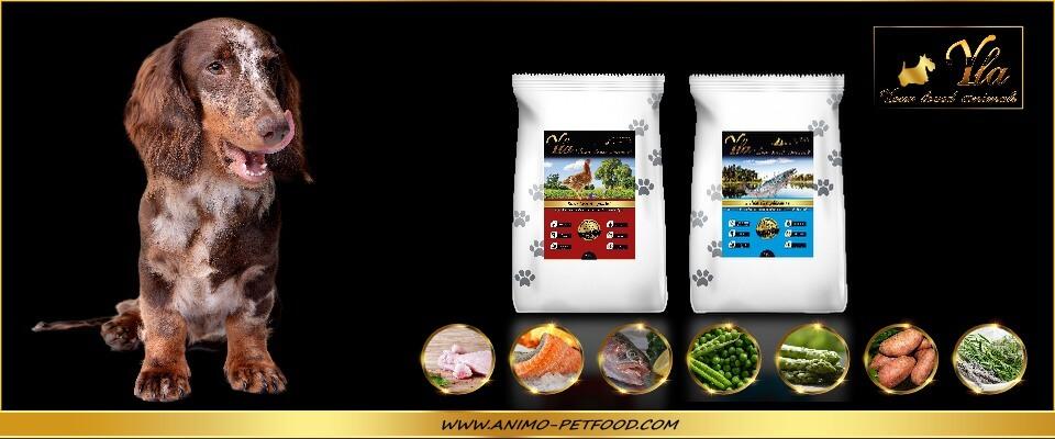 alimentation-sans-cereales-ni-gluten-poulet-saumon-truite-pour-chien-petite-race
