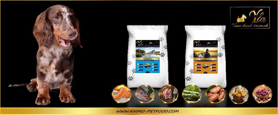 poissons-canard-alimentation-sans-cereales-ni-gluten-pour-chien-petite-race