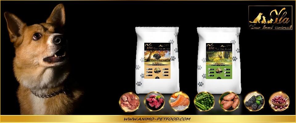 alimentation-sans-cereales-ni-gluten-dinde-venaison-pour-chien
