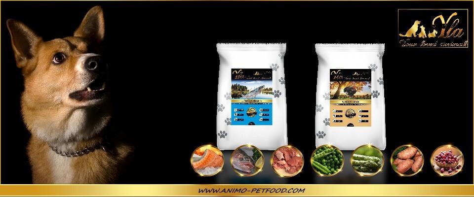 alimentation-sans-cereales-ni-gluten-poissons-dinde-pour-chien