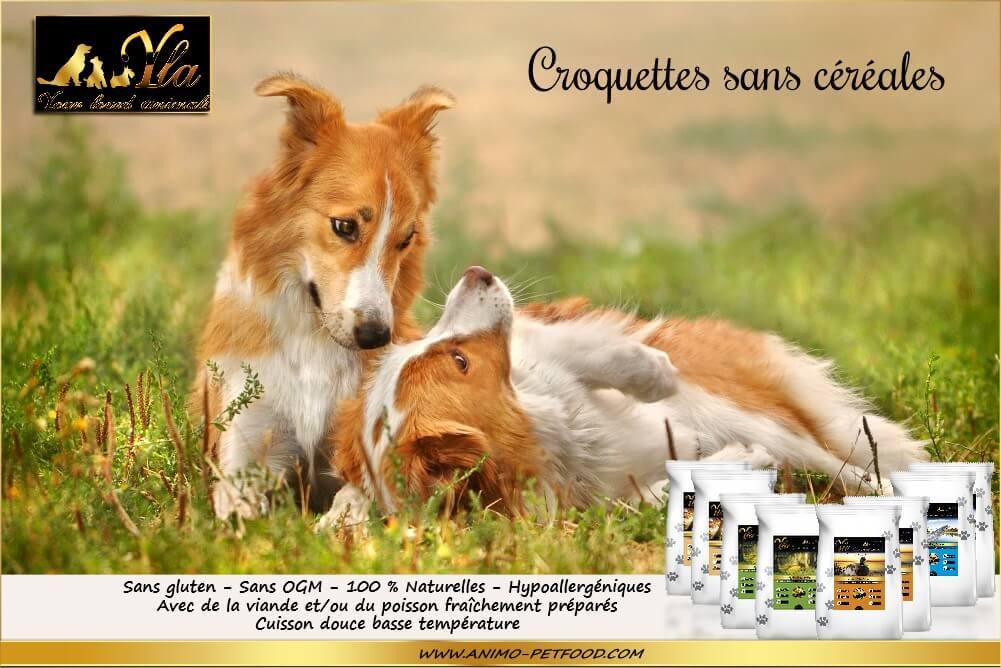 chien-aliments-sans-cereales-hypoallergeniques-naturels