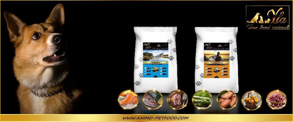poissons-canard-alimentation-sans-cereales-ni-gluten-pour-chien