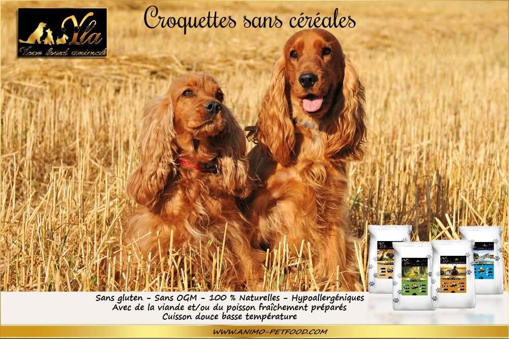 chien-alimentation-sans-cereales-hypoallergenique-naturelle
